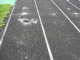 Ft. Recovery High School Track & Field Renovation