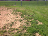 Piqua Youth Baseball & Softball Field Renovation